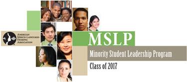 MSLP17-logo-375.jpg