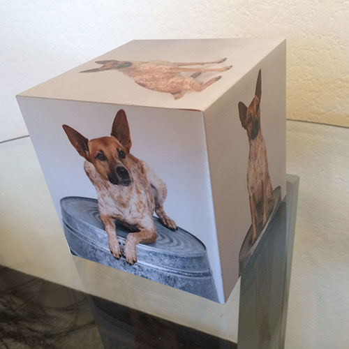 A Photo cube is a great last minute gift