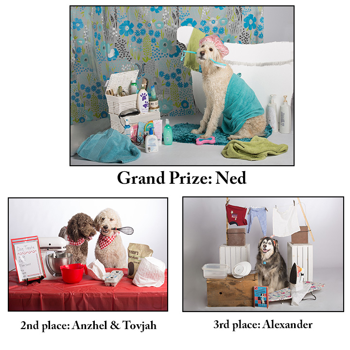 "Winners in the Calendar Contest, theme: ""Domestic Dogs"""
