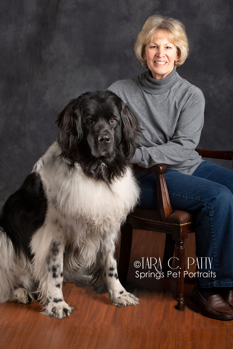 Owner and Newfoundland dog pictures in Colorado Springs