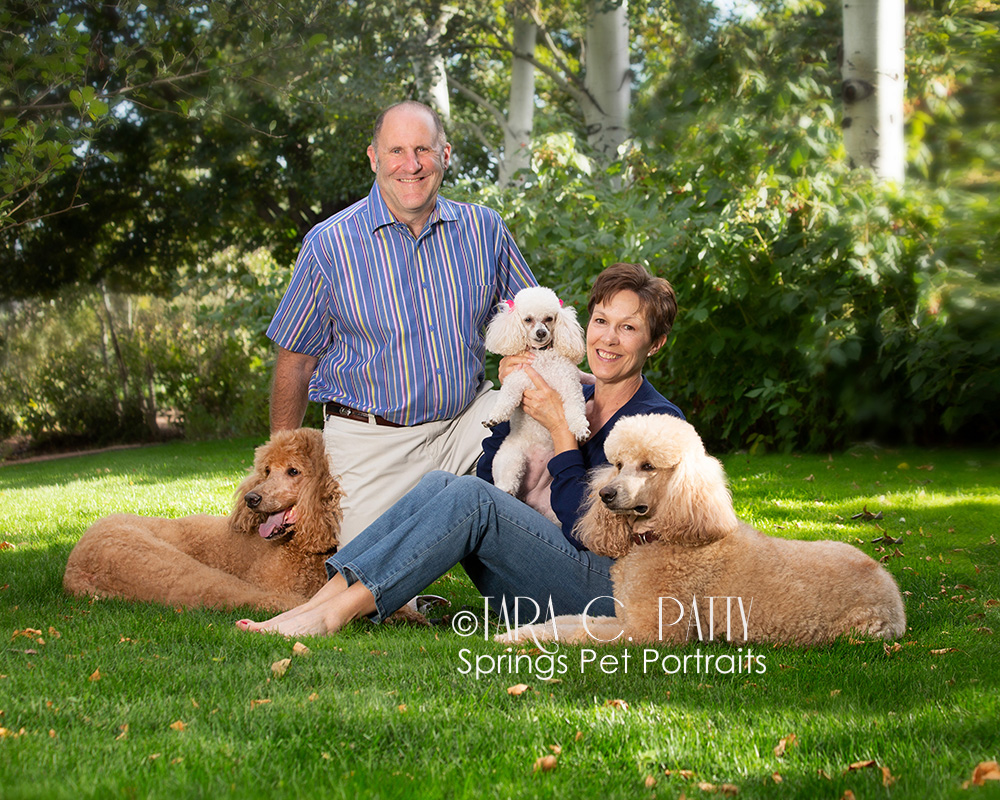 Outdoor dog and owner portraits in Colorado Springs