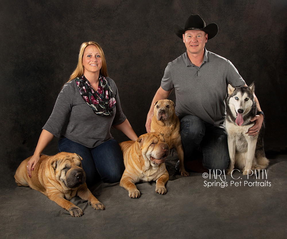 Dog and owner photos in Colorado Springs