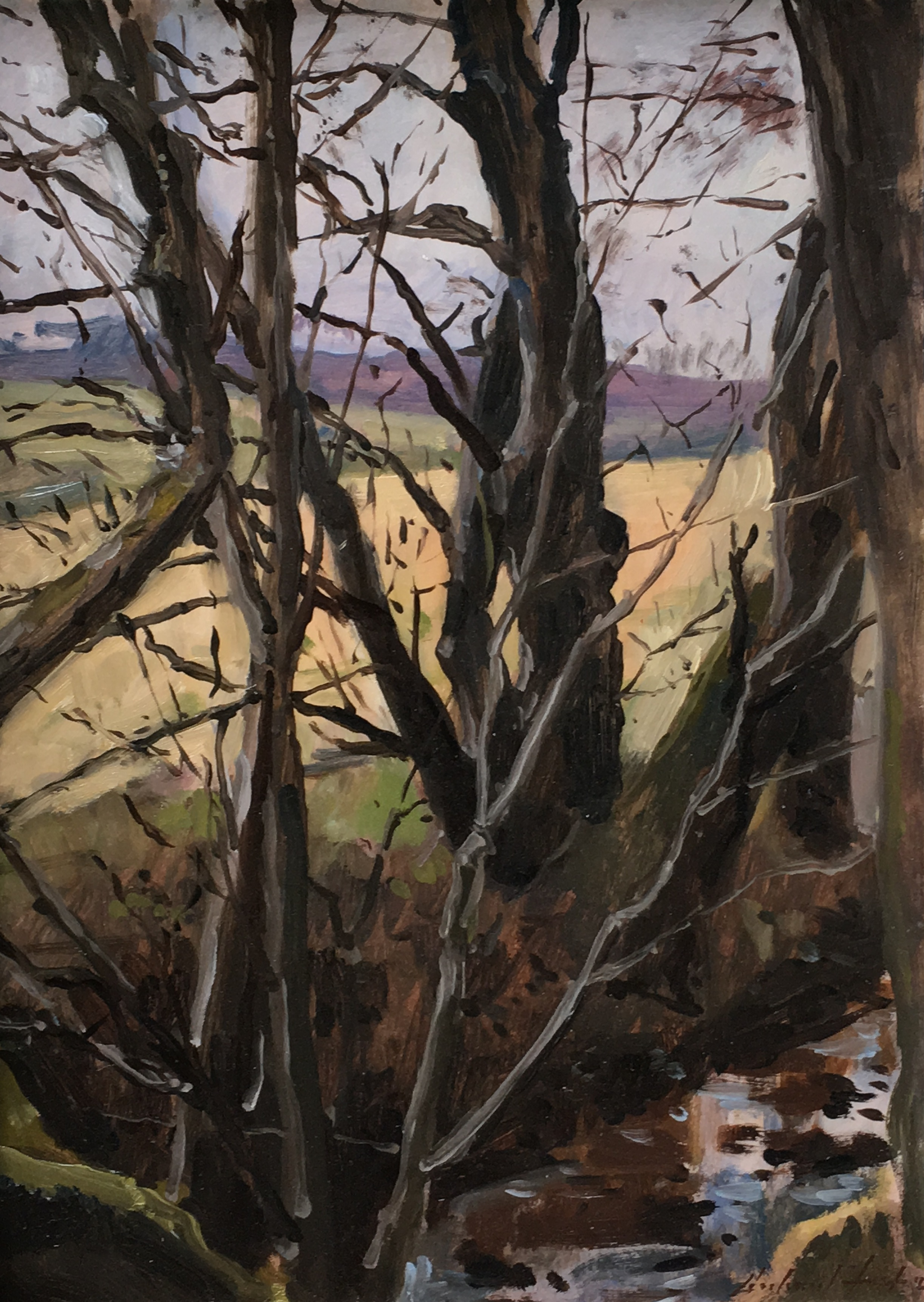 Trees in Winter, Glennie, oil, 14 x 10.jpg