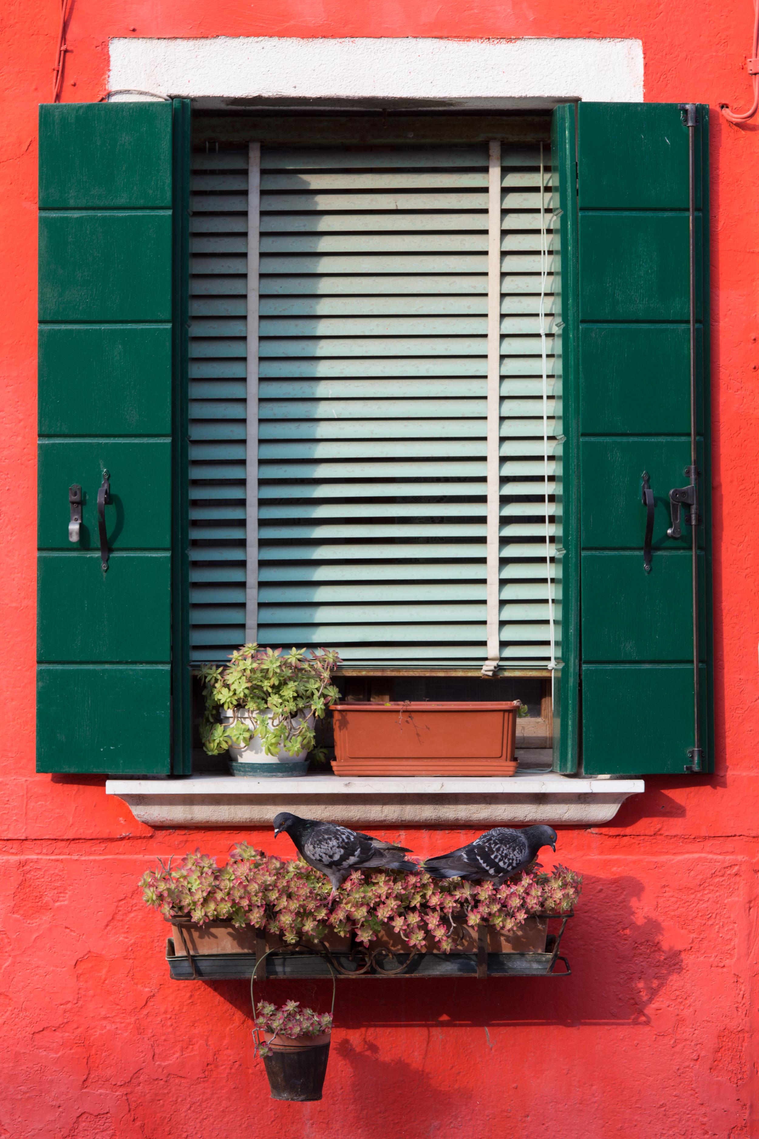 Window on the Island of Burano - 6d - 70-200 f4 @ 165mm/ f7.1/ 1/125 sec/ iso100