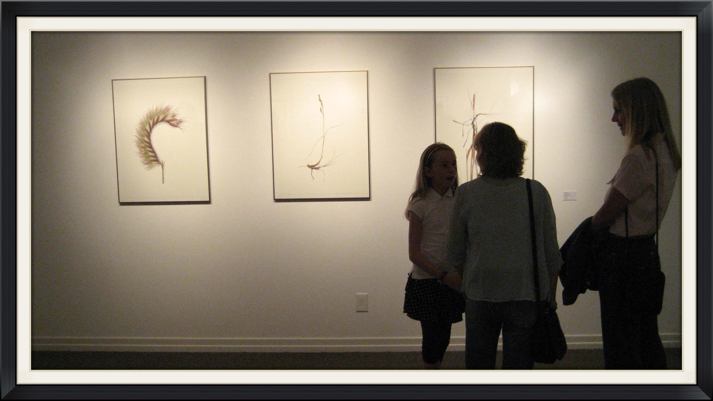 'Annual Grama - Head' (far left) and other photos by Matilda Essig.