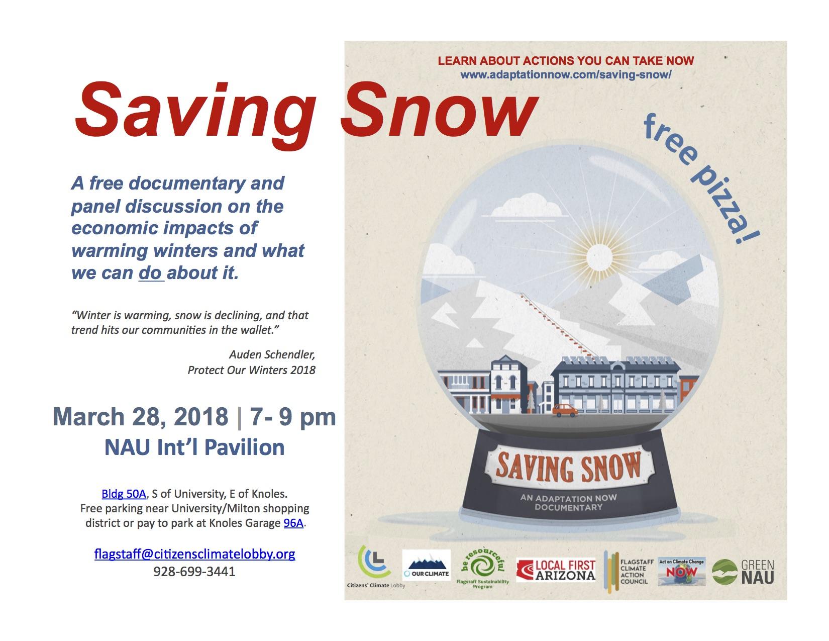 Saving Snow Flag Flyer.jpg