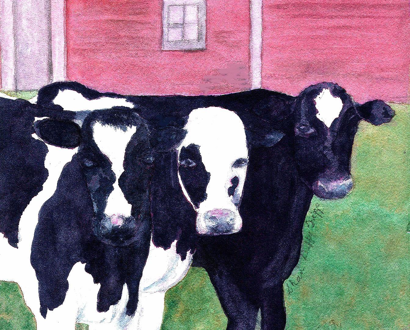 3 cows with barn copy.jpg