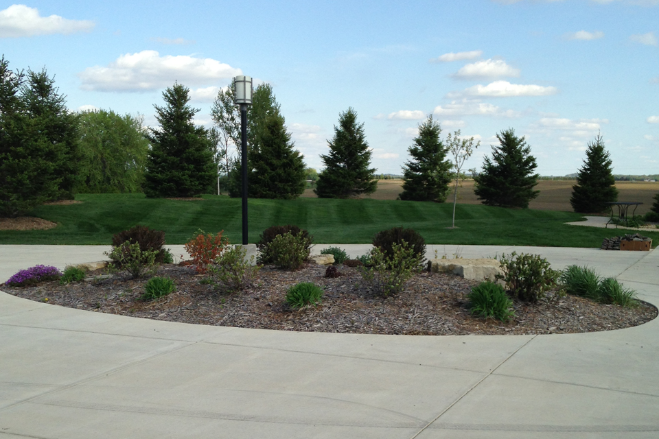 Mounded mulch and shrub garden