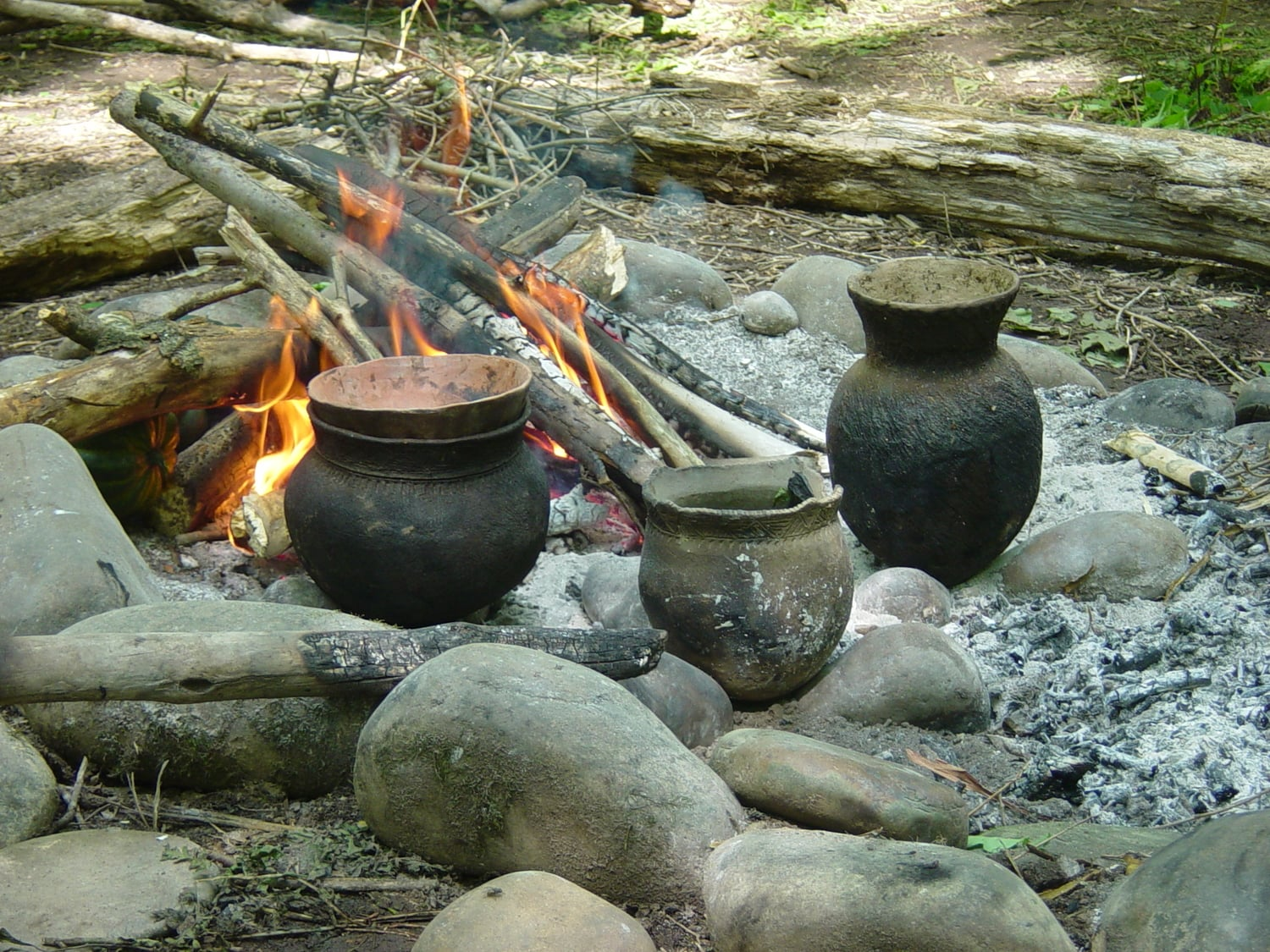 Fireside Cooking -