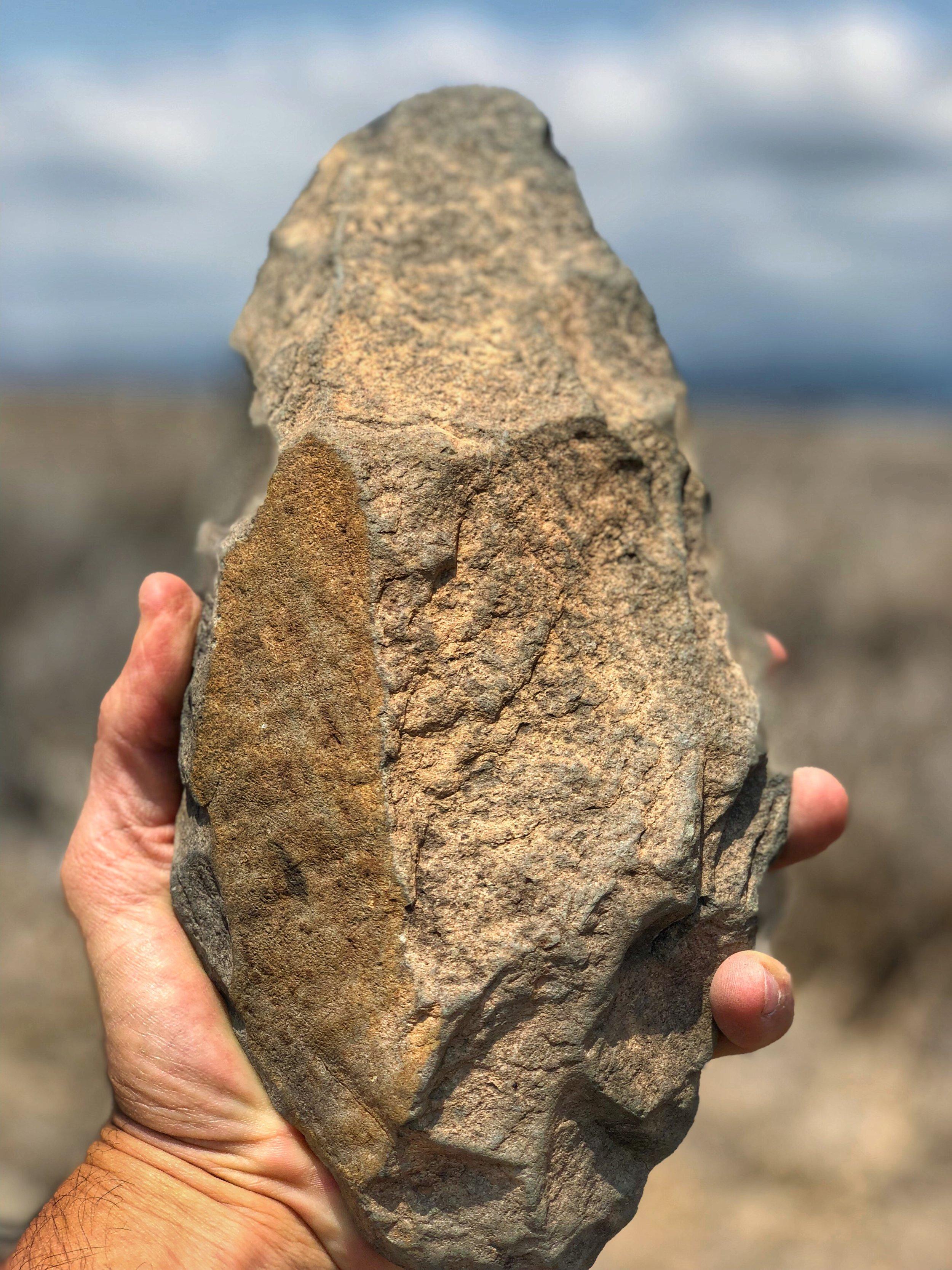 Hand ax found at Lewa in Kenya