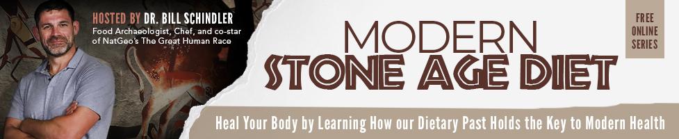 Modern Stone Age Diet Banner.jpg