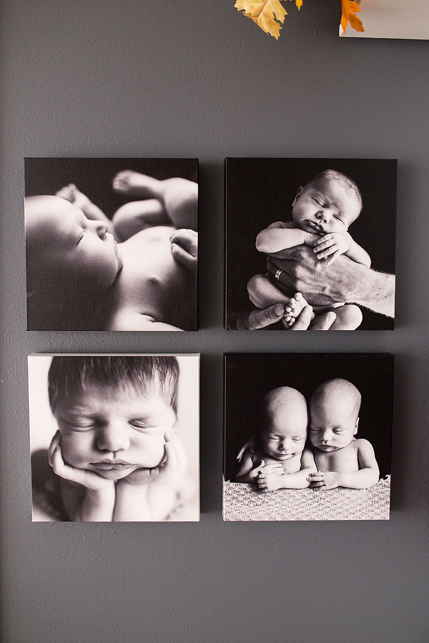 Black and white canvases displaying beautiful newborns