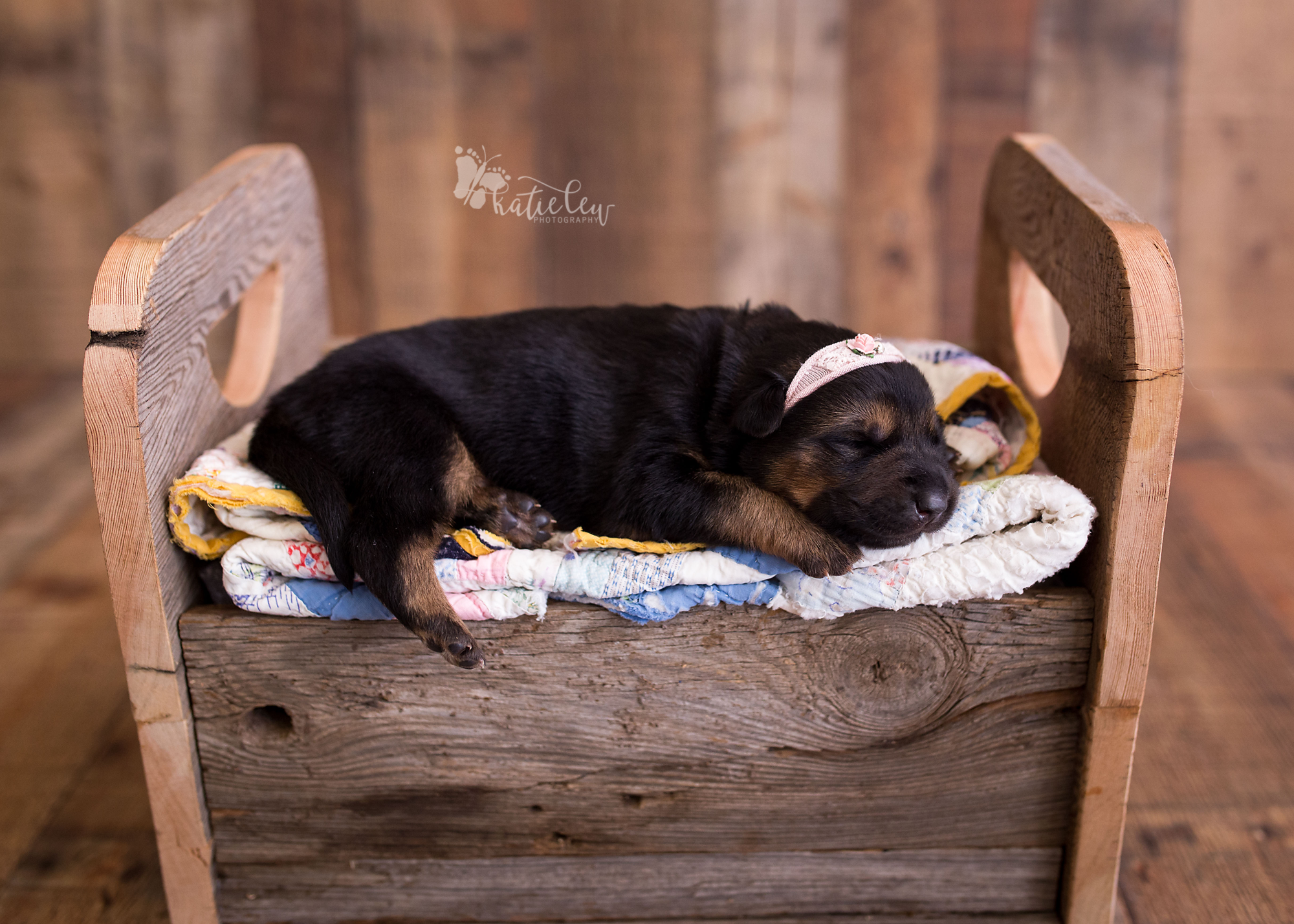german shepherd puppy laying in a bed on quilts
