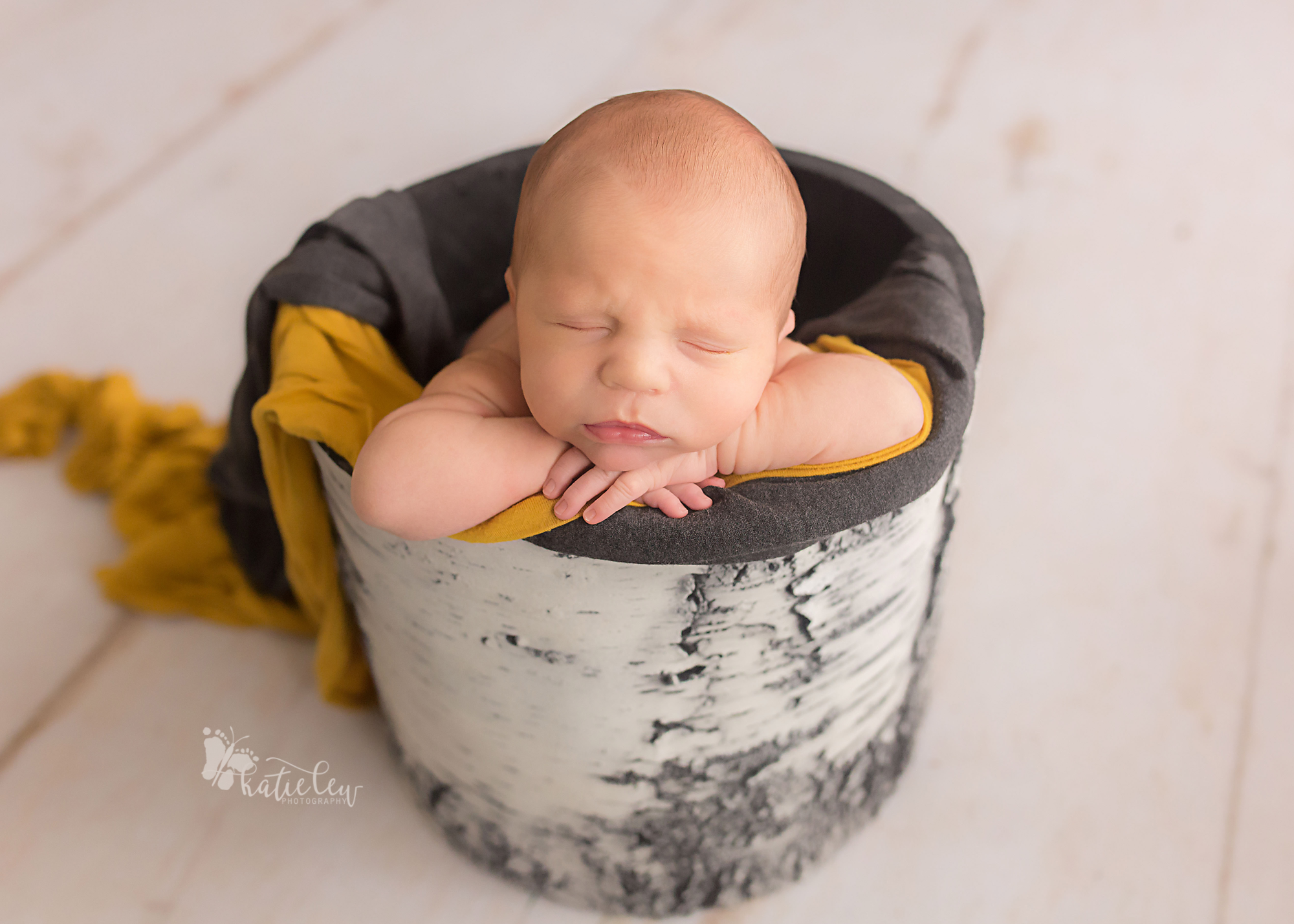newborn baby boy in a birch tree planter