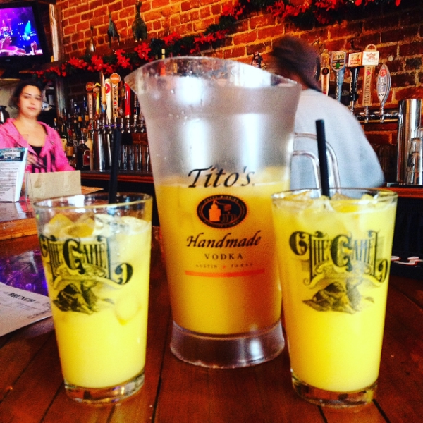 cheap mimosa pitcher in Richmond