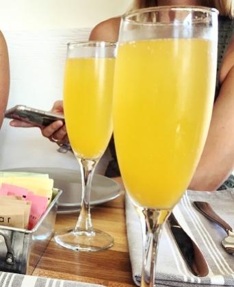 massey mimosa