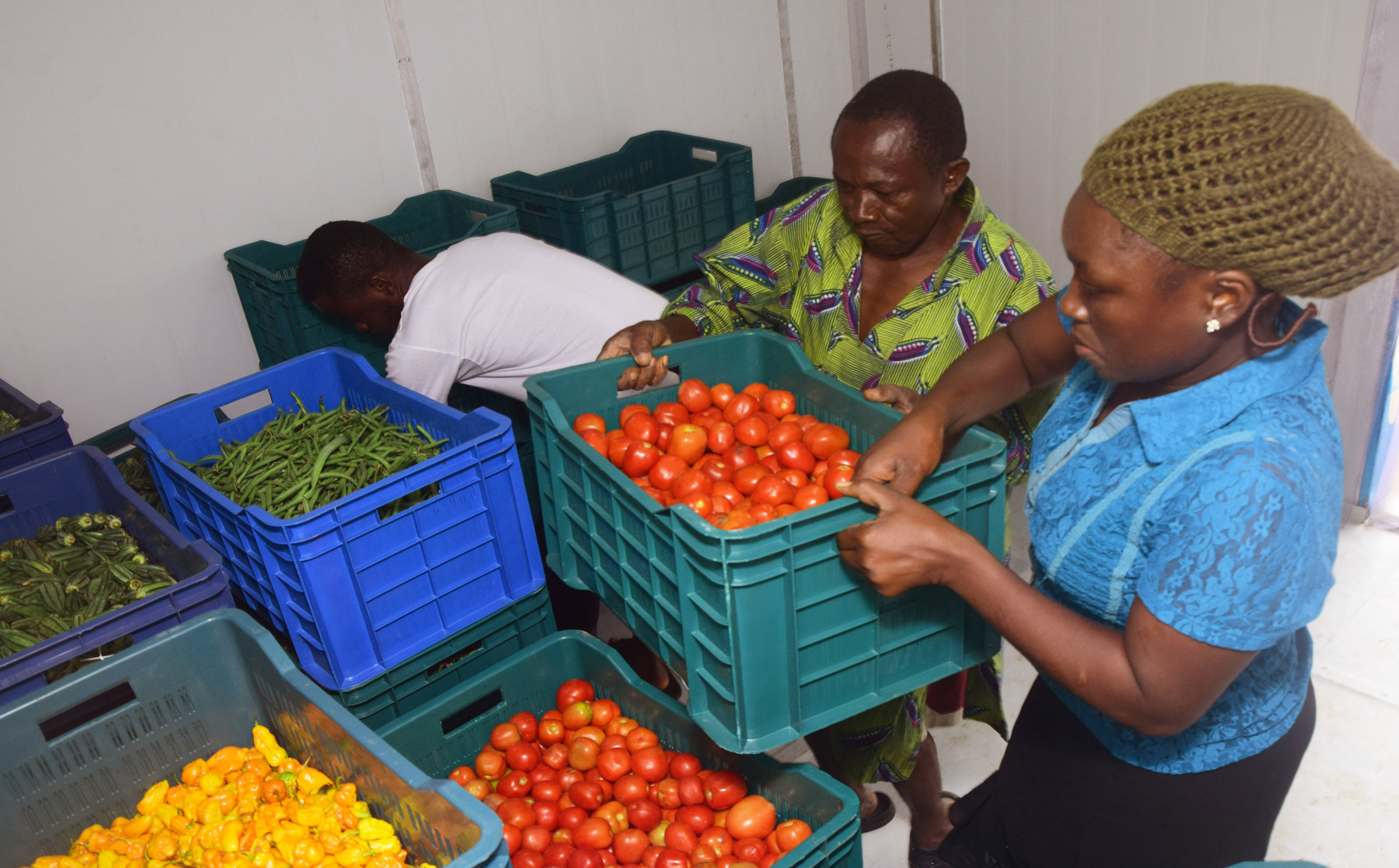 Solar-powered cold storage for developing countries