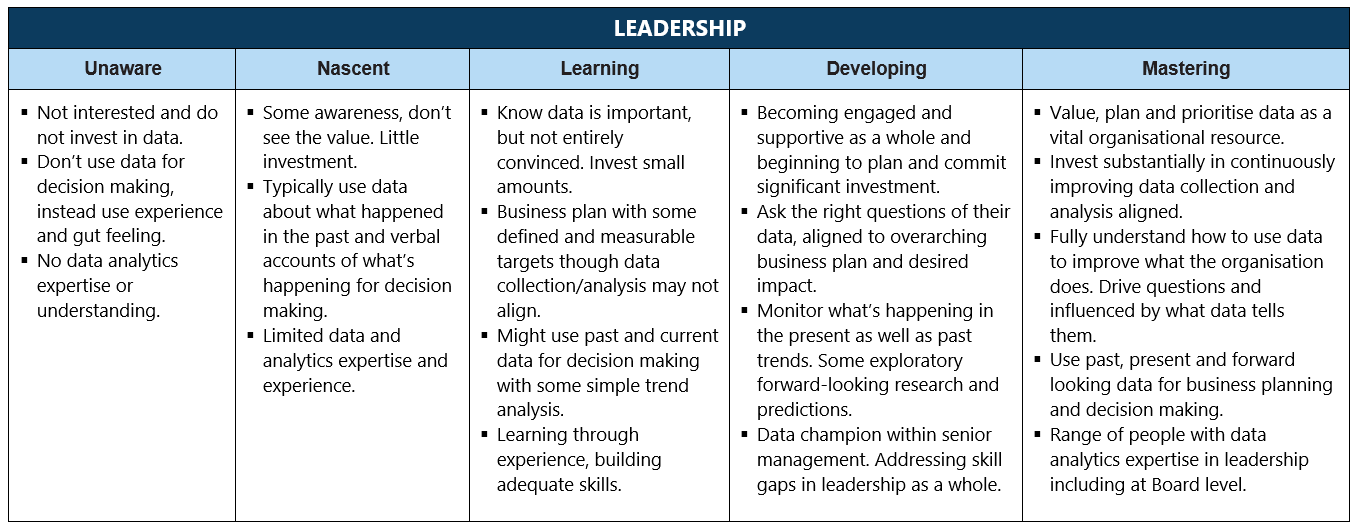 stages-for-leadership-table-example-v2.png