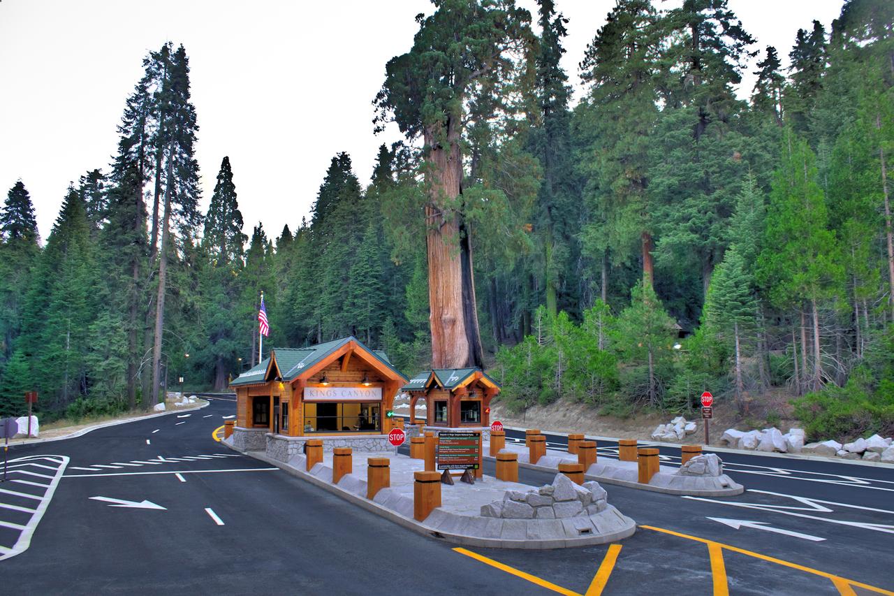 big stump tonemapped.jpg