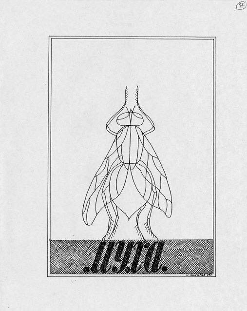 Drawing-Fly-1989-ball-point-pen-on-a-photocopied-drawing-279-x-216-cm-signed-and-dated-bot.jpg