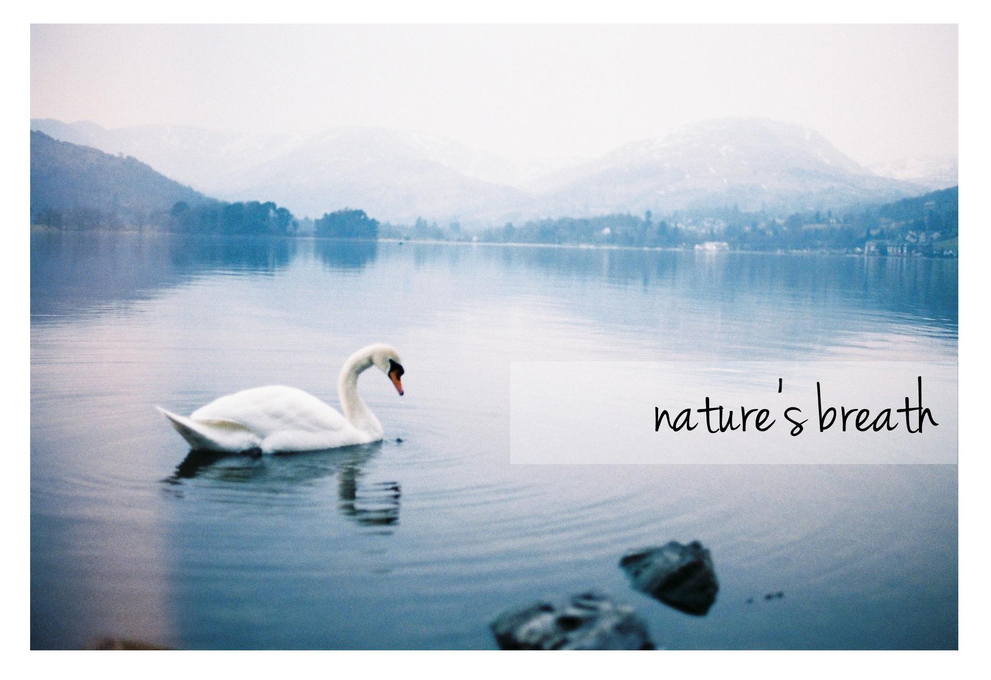 naturesbreath