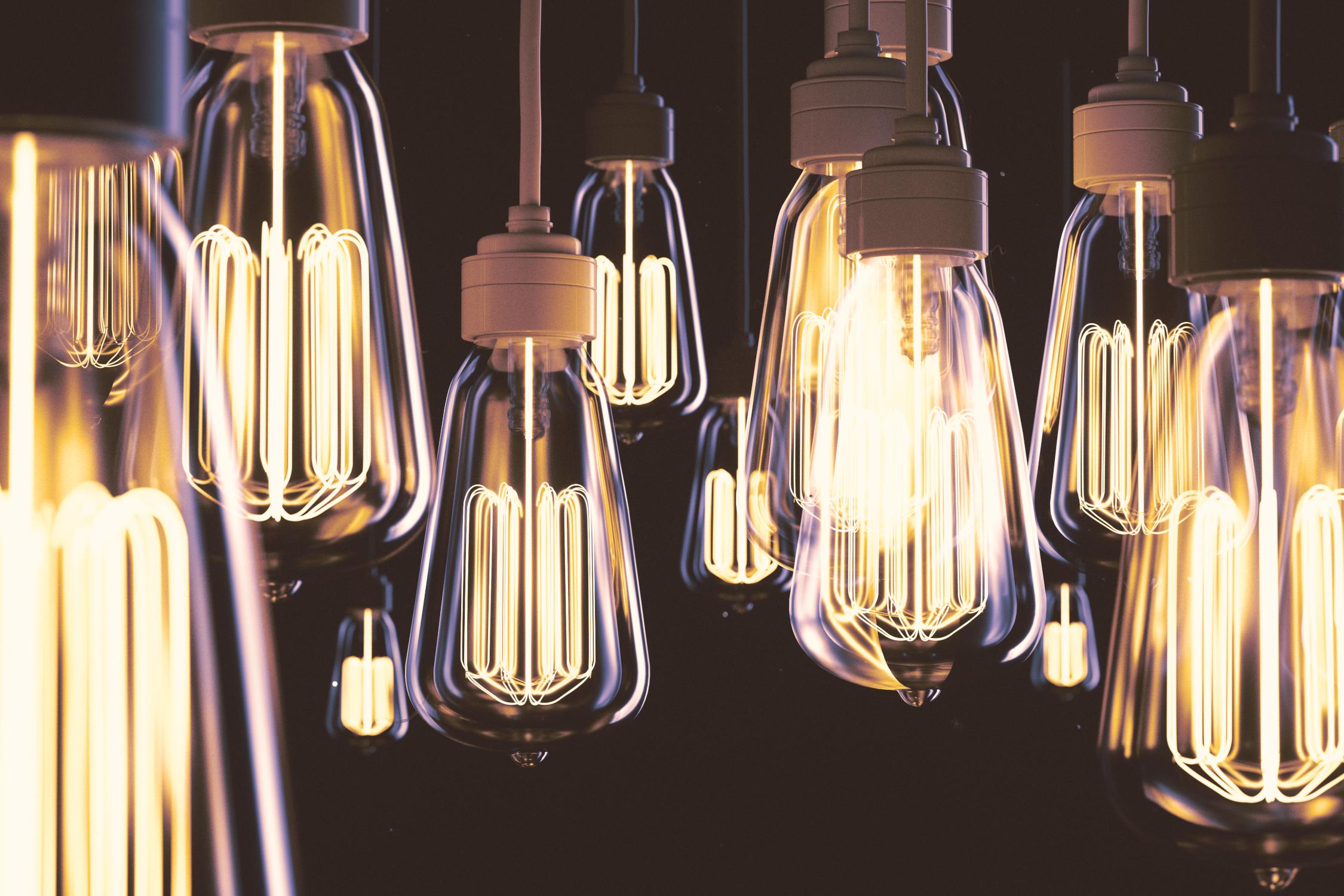Bulbs_So_many_ideas_so_little_time_S.jpg