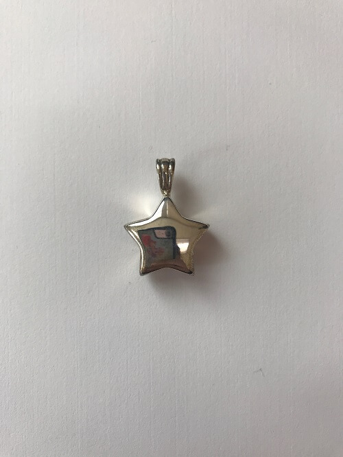 Style #133SS  Sterling silver star  $120.00