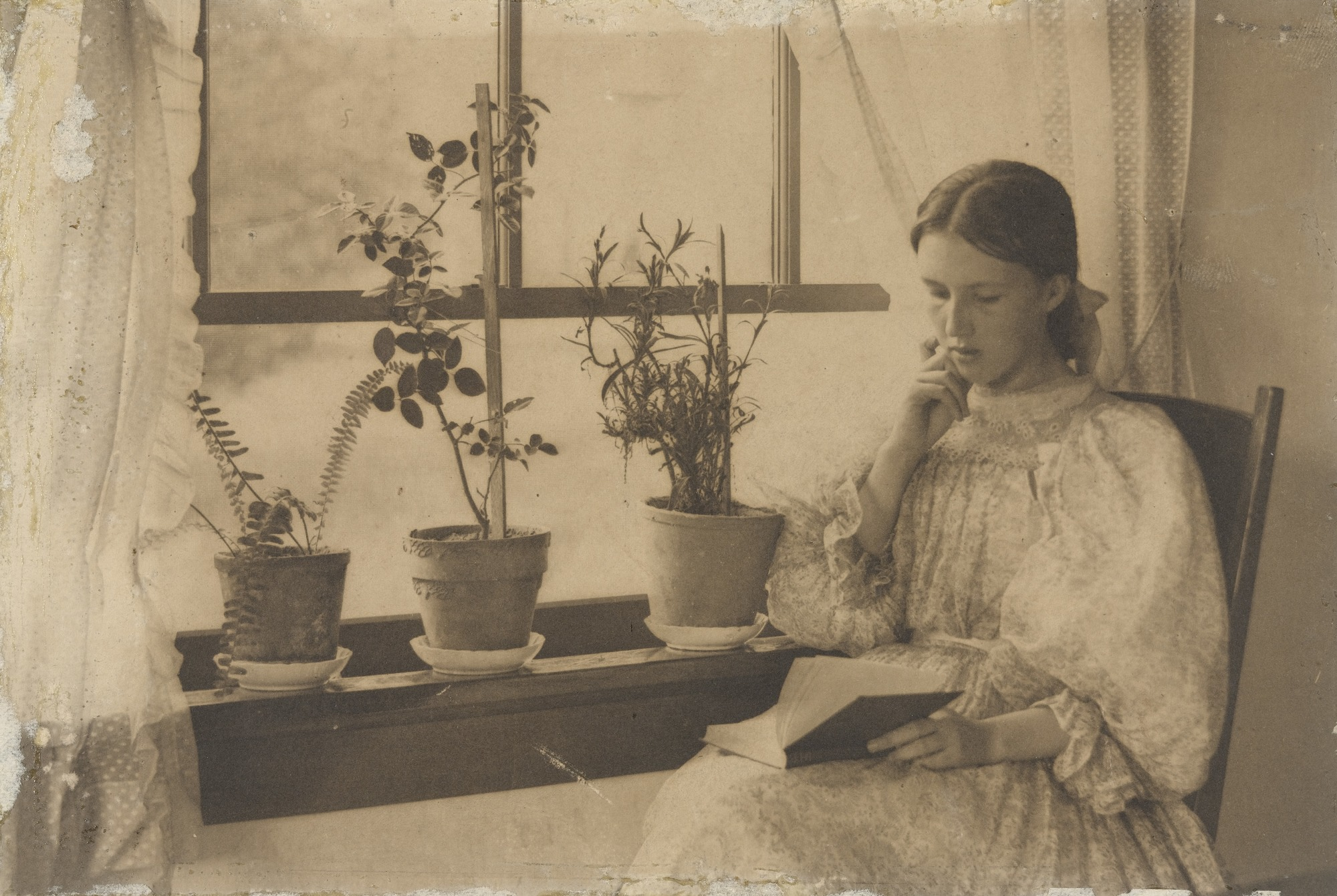 Julia McCune (Flory) reading by a window, photographed by Clarence White, 1896.