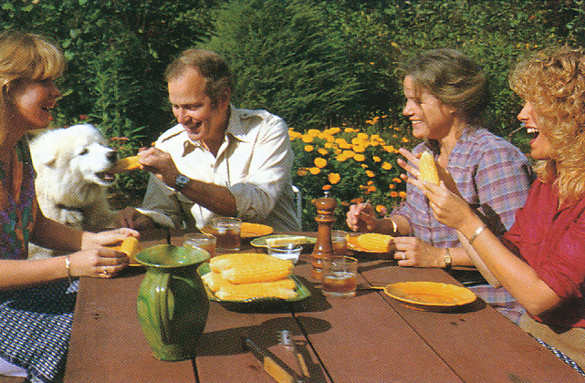 Fresh corn in the sunshine. From 'The Victory Garden Cookbook', 1982.