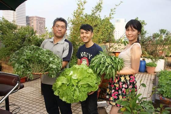 員工可以認養一塊地,種自己想吃的菜。