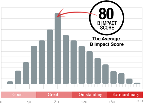 圖表出處:   B Impact Assessment 官網