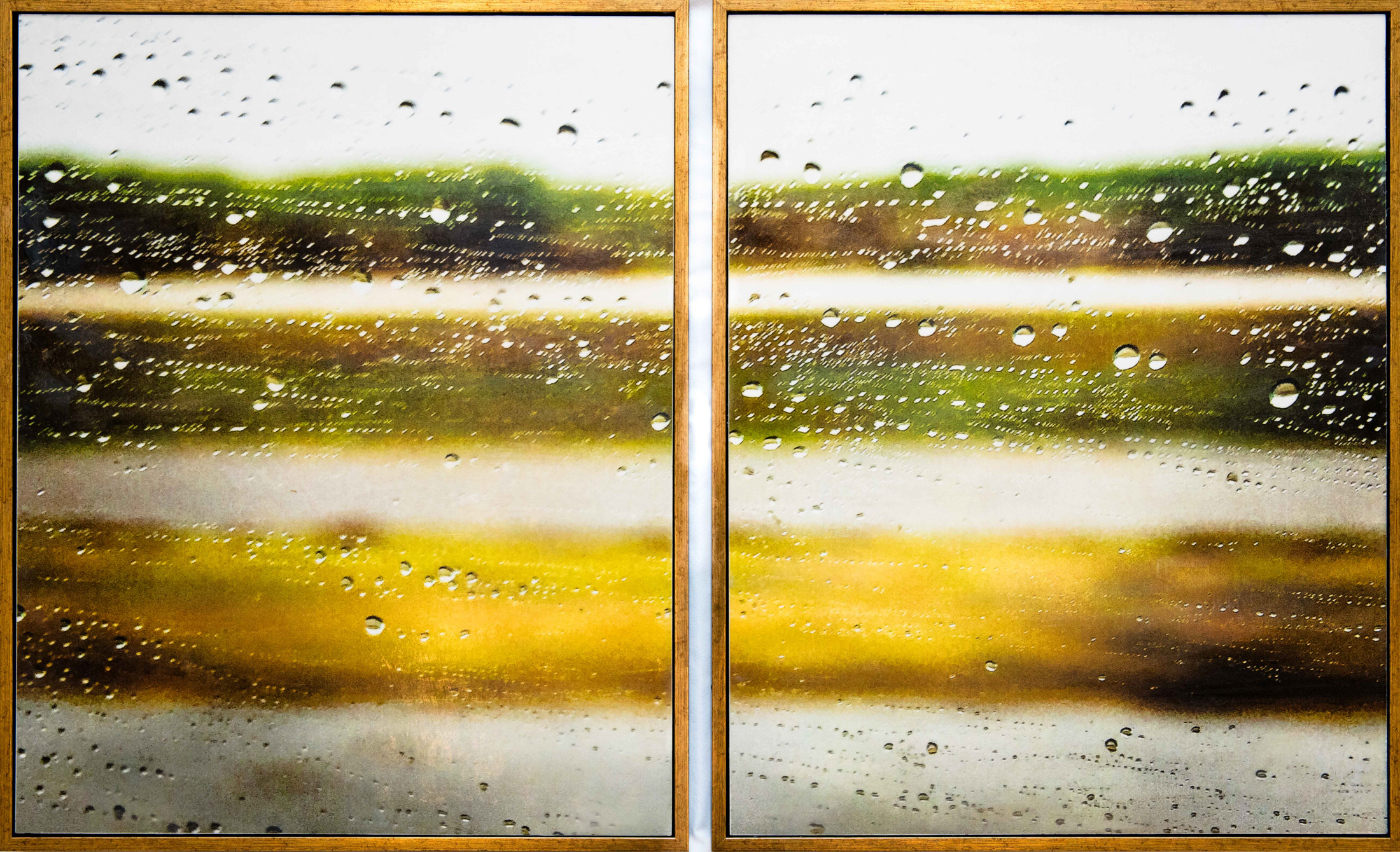 """Acadian Reverie, 2017, 22"""" x 36"""" diptych, pigment print (K3 ink) on kozo paper, layered on board with encaustic medium, oils."""