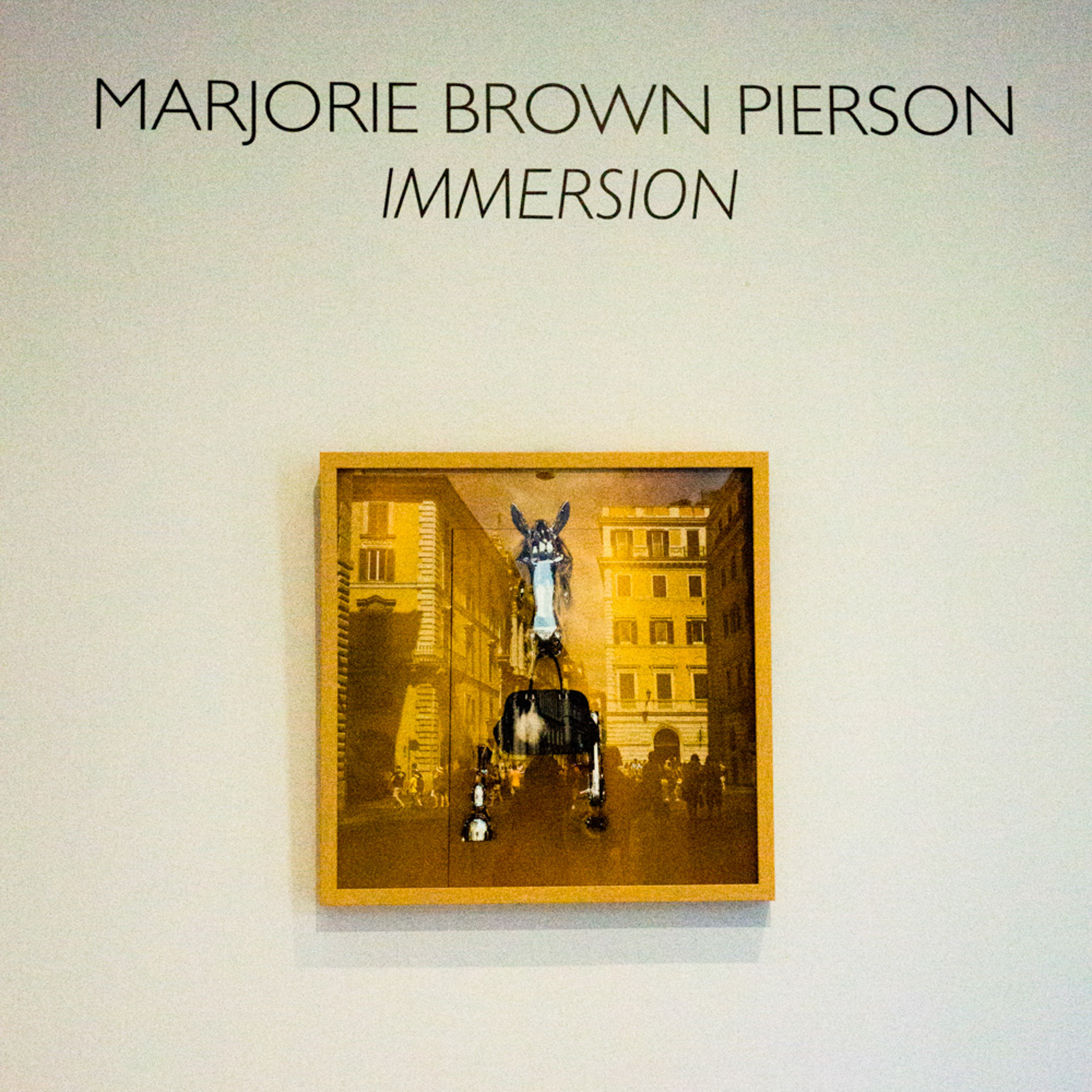 Immersion,  solo show at Martine Chaisson Gallery, New Orleans, LA 2014