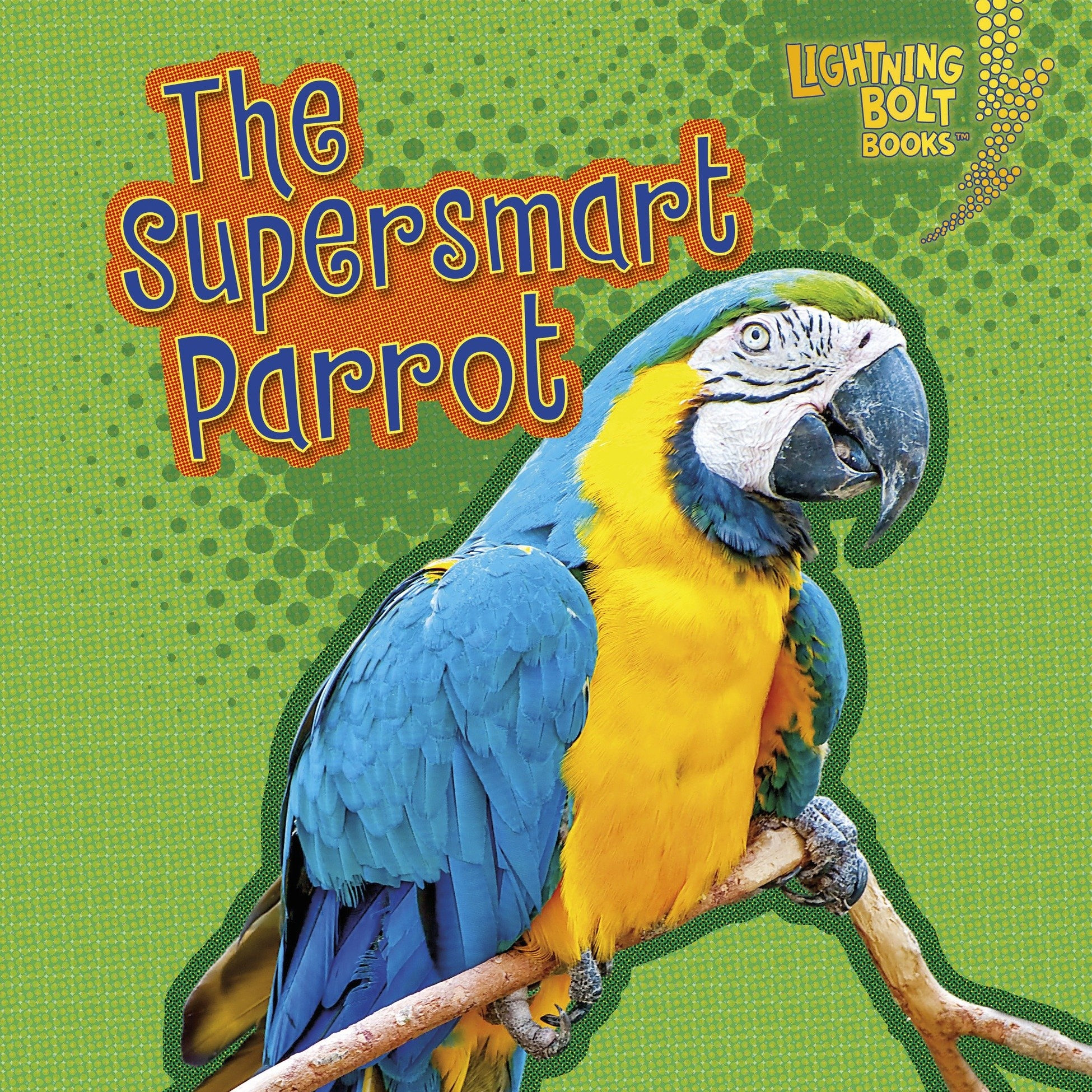 the supersmart parrot.jpg