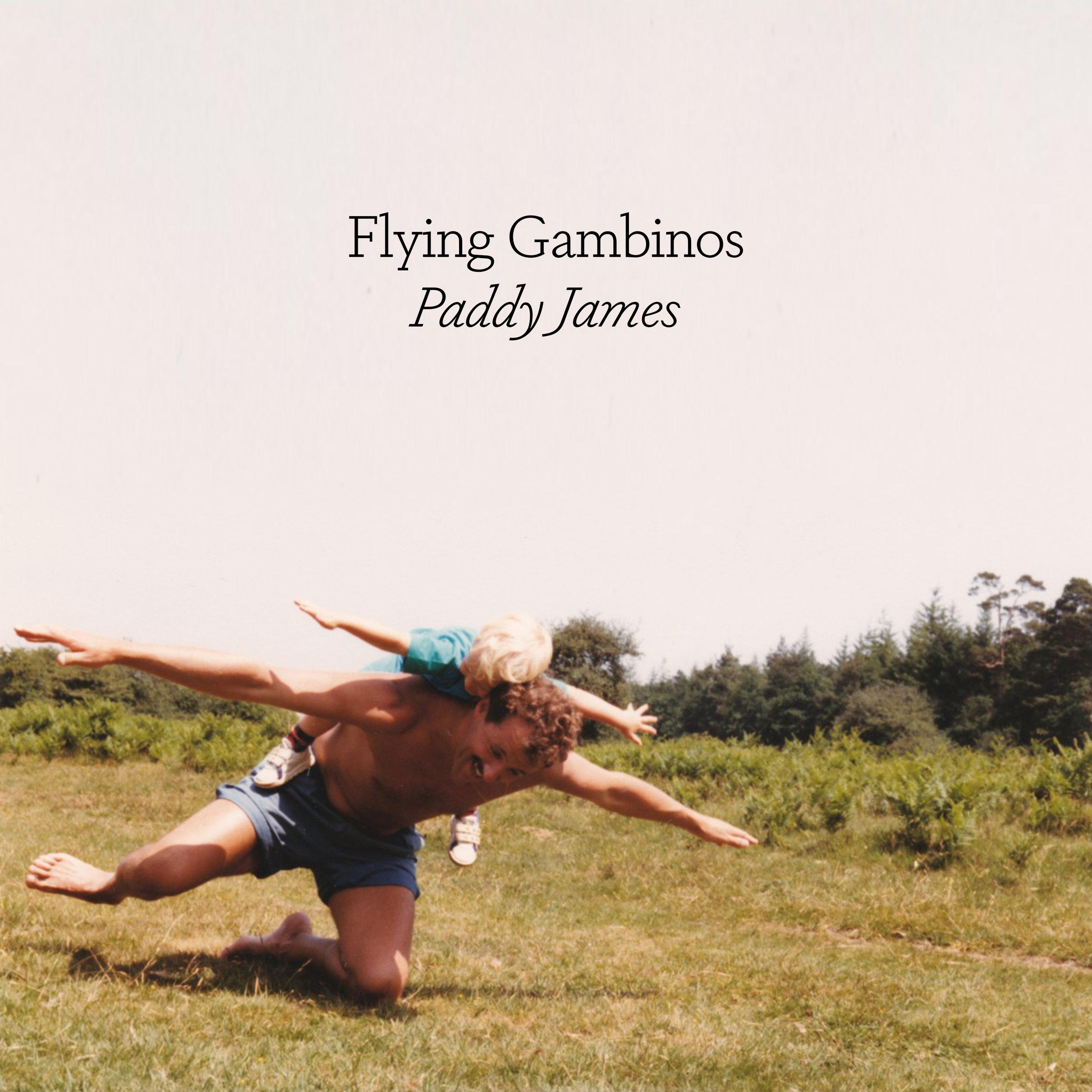 Flying Gambinos - Paddy James