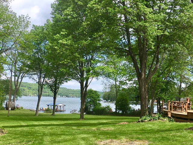 Lawn :Lake View.jpg