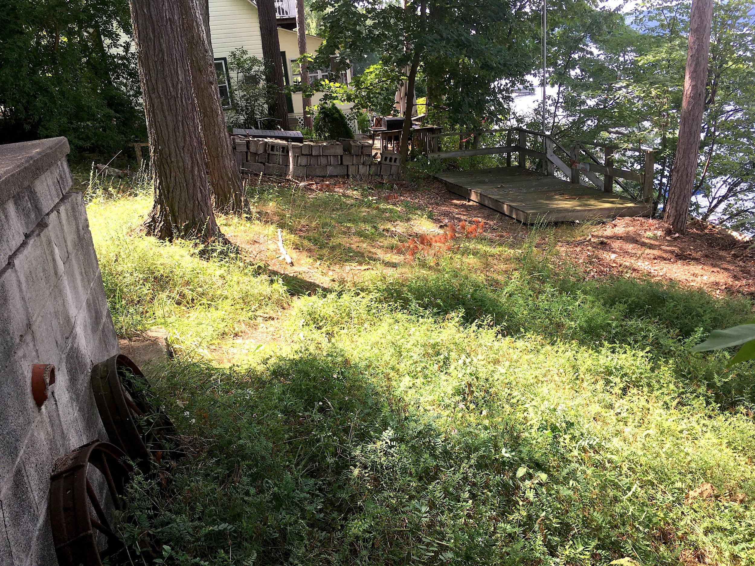Front Yard View 2.JPG