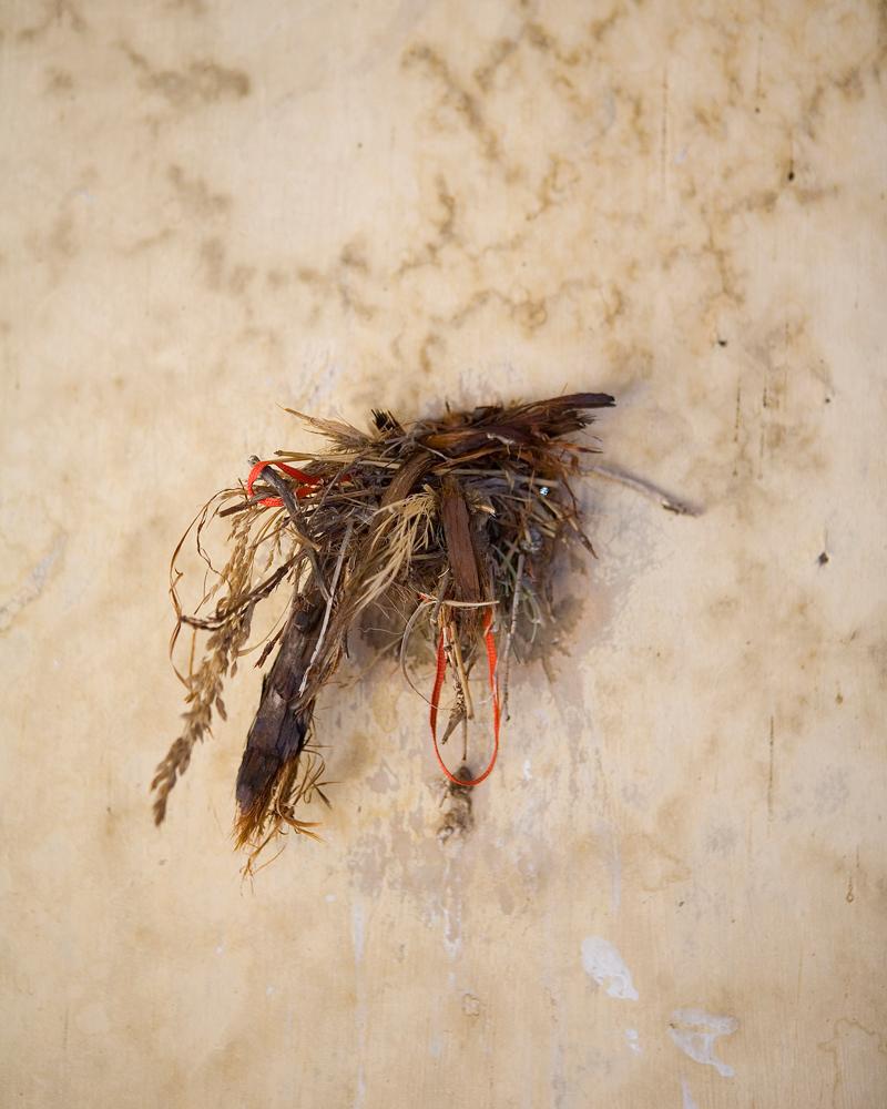 "Title: 4503A-19617 (bird's next), Archival pigment print, 20x16"", 2008"