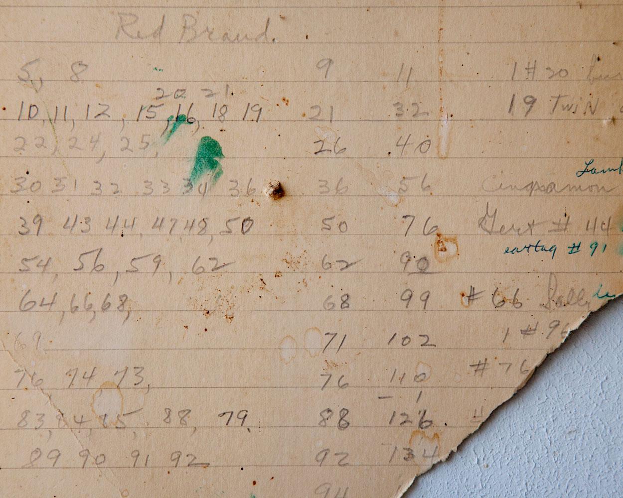 "Title: 196J-19617 (lambing chart), Archival pigment print, 16x20"", 2011"