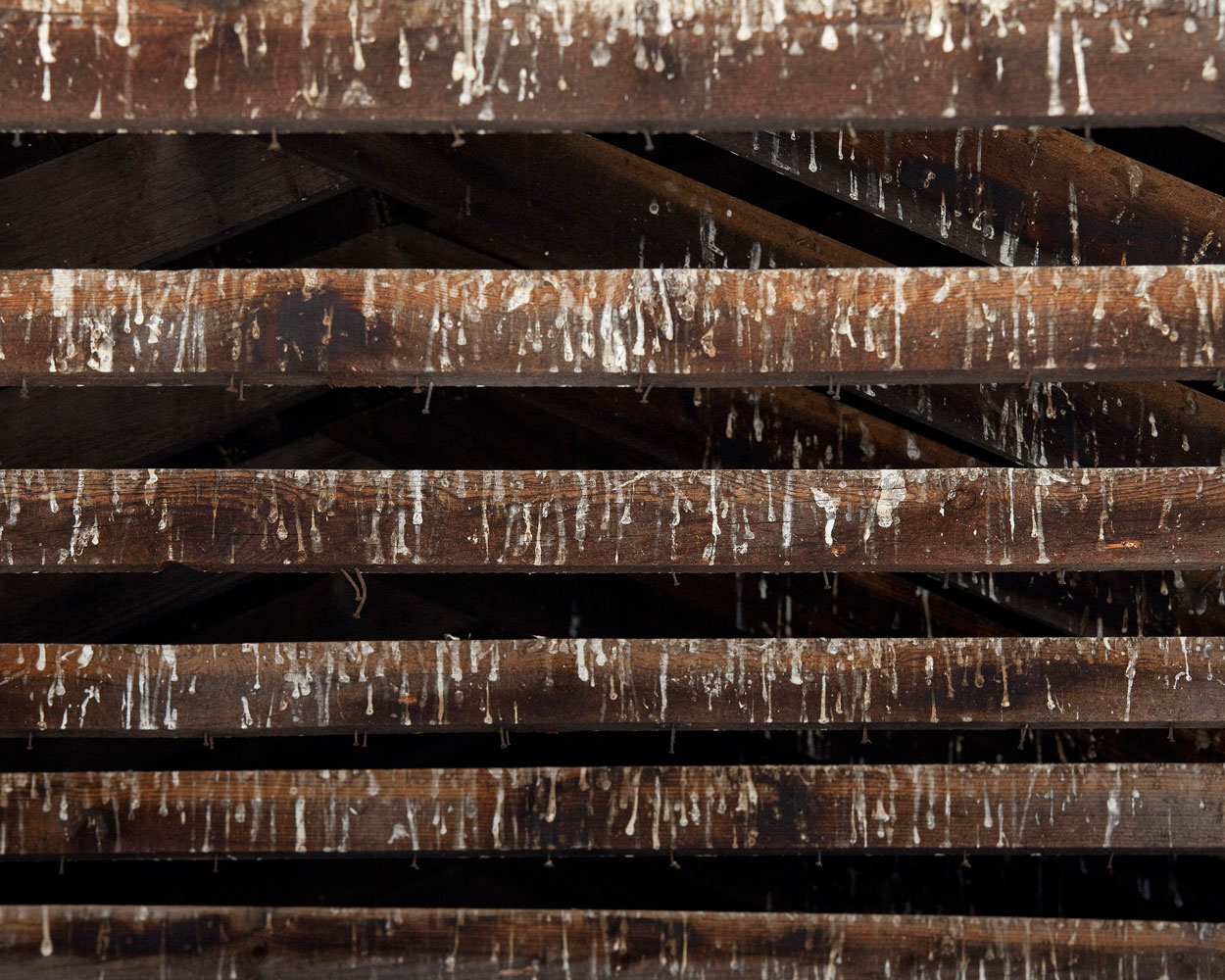 """Title: 5099A-19617 (rafters), Archival pigment print, 20x16"""", 2010"""