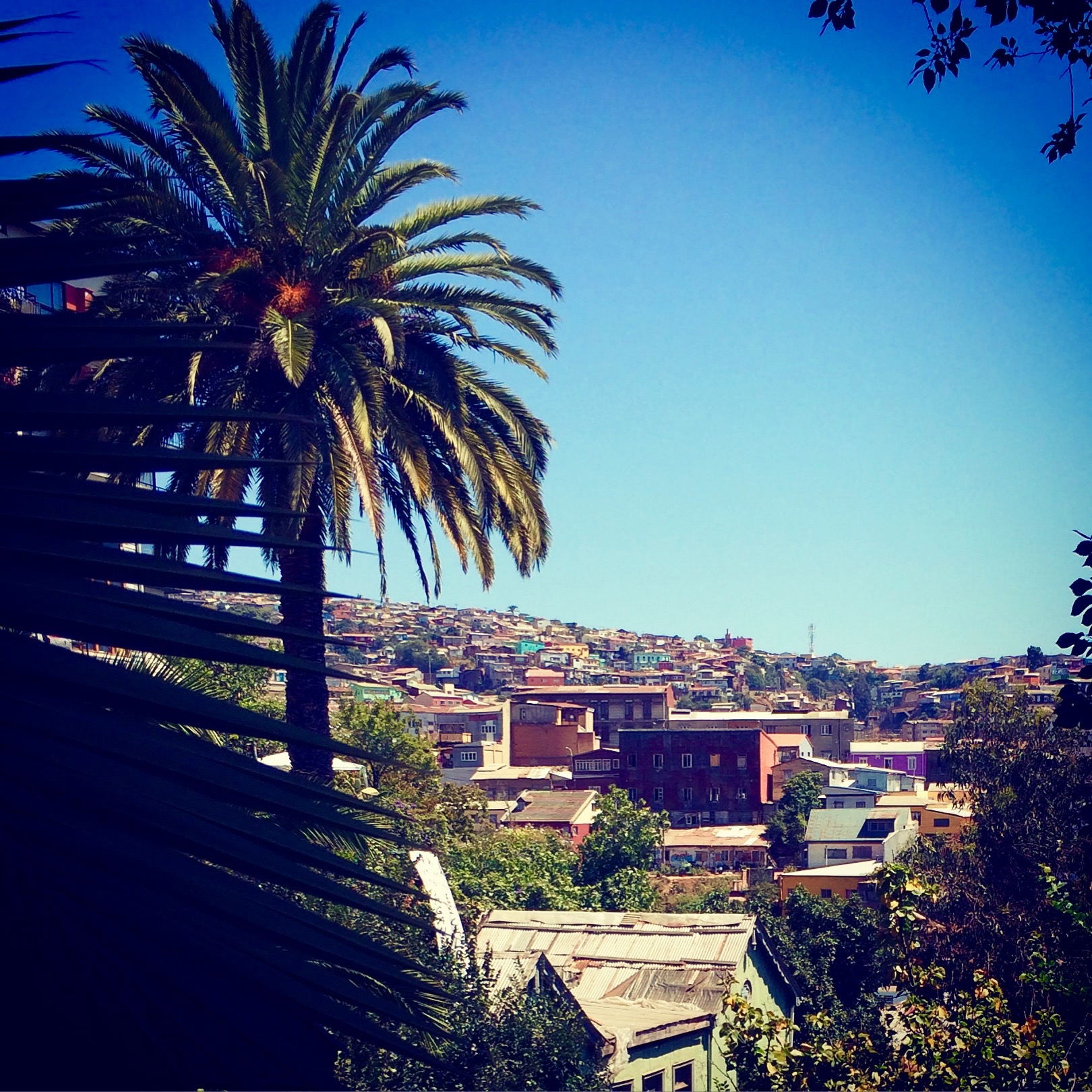 Over the roofs of the cerros, Valparaiso Chile - 3 Days*