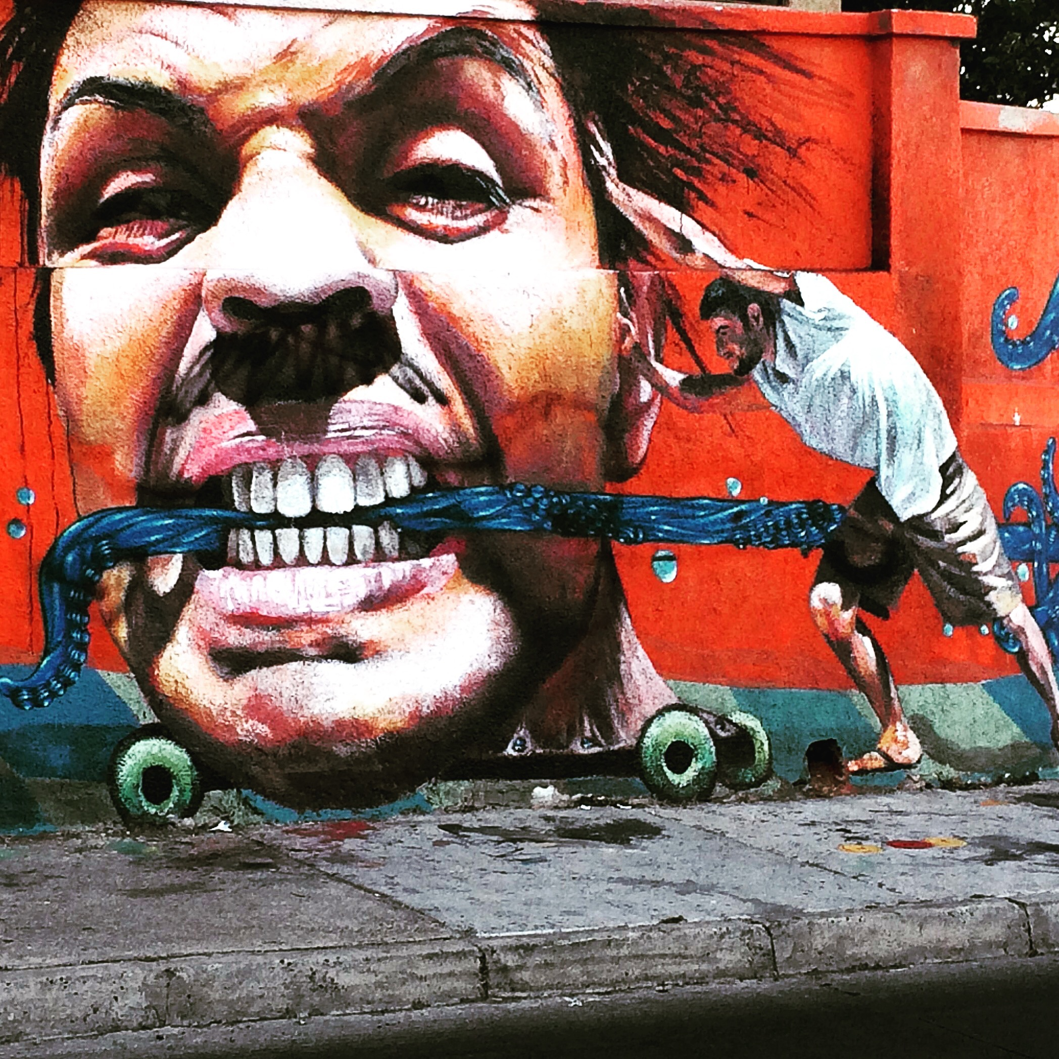 Martin Ron Mural, Valparaiso Chile - 3 Days*