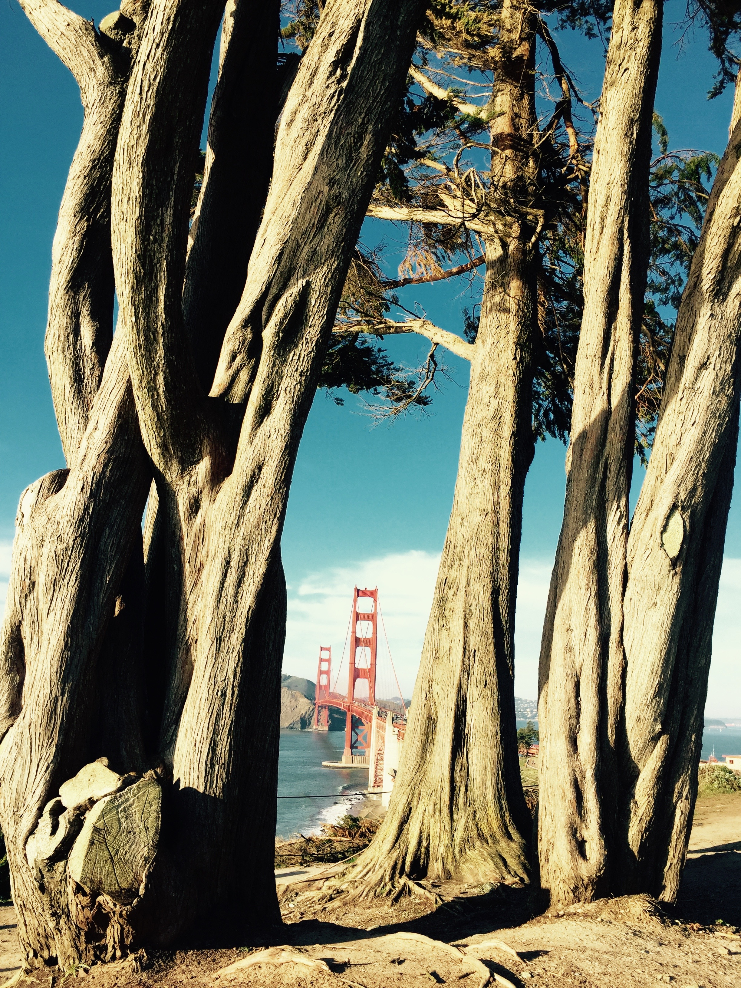 View of the Golden Gate Bridge, San Francisco California - 3 Days*