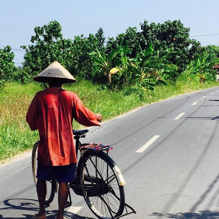 bali rice fields bike 3 days julia etzelmueller