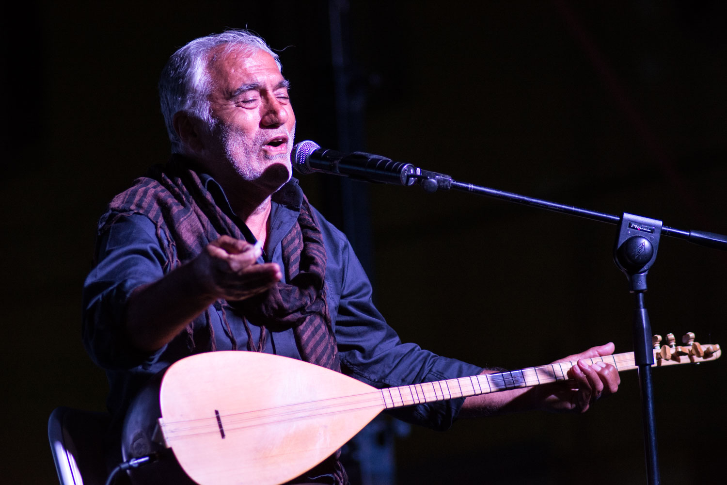 Ali Baran, master of the bağlama, performs at the 2014 Munzur Festival