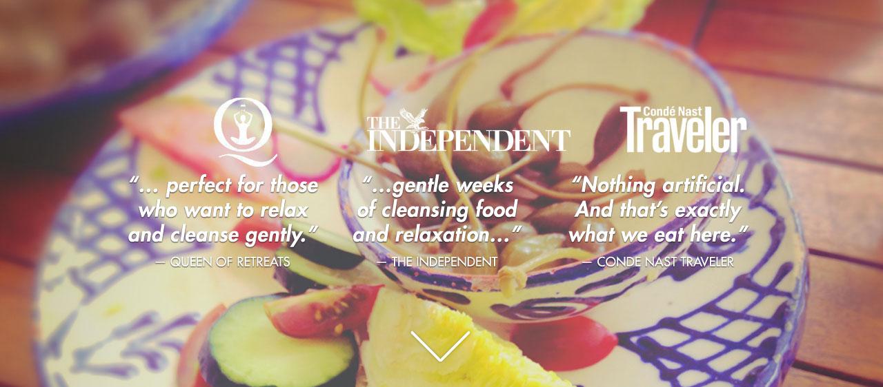 olive-retreat-spain-change-andalucia-detox-vegan.jpg