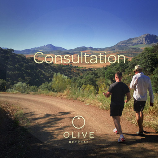 Copy of Olive Retreat in Spain Rawfood Yoga Andalucia Vegan Meditation Ayurveda