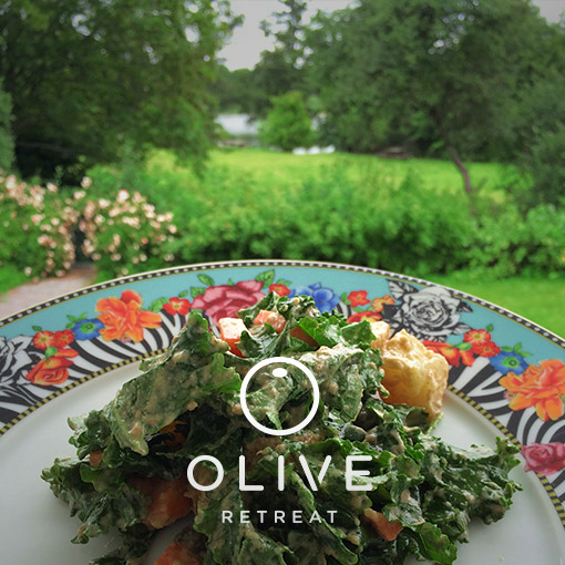 olive-retreat-spain-detox-13.jpg