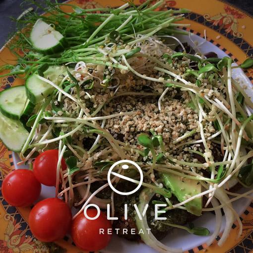 olive-retreat-spain-detox-9.jpg