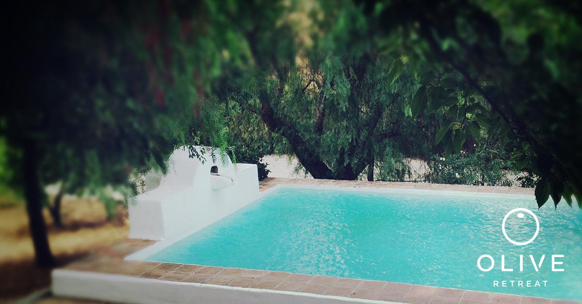 olive-retreat-spain-detox-relax-pool.jpg